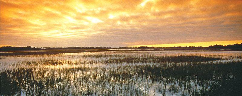 Marsh_sunrise
